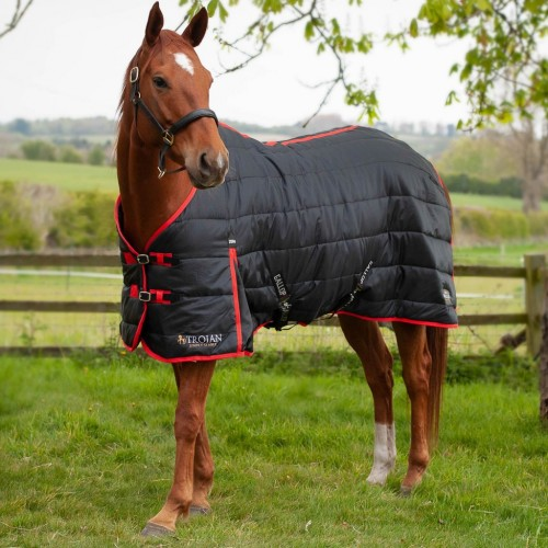 Trojan 200 Stable Rug by Gallop image #