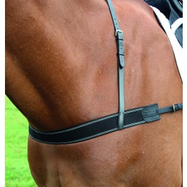 Shires Elastic Breastgirth
