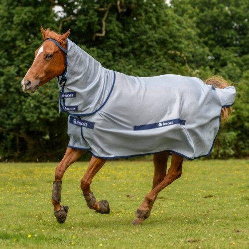 Buzz-Off Full Neck Fly Rug by Bucas image #