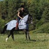 Buzz-Off Riding Fly Protection by Bucas image #