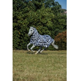 Sweet Itch Zebra Rug