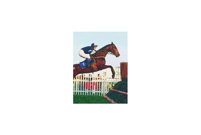 Theresa Morris, owner, rider and trainer of Stretchit at Cheltenham 1999.