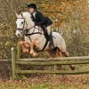 The Winter Softshell breeches in action!