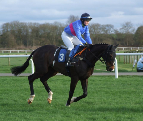 The Sharkskin Pad in Action at Stratford Racecourse