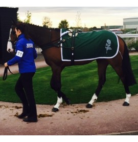 Superior Melton Paddock Sheet with Bottle Green logo embroidered on each side