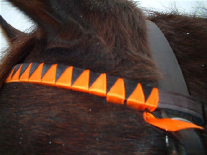 Browband in black and orange silk
