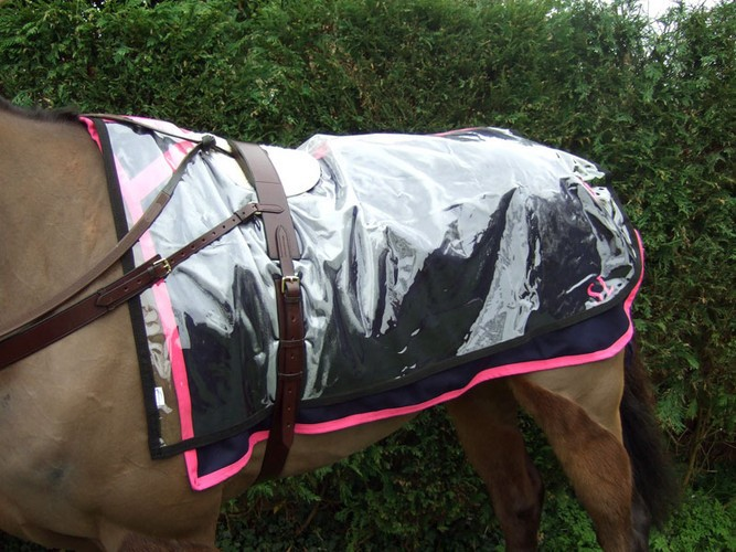 Clear Paddock Oversheet with black trim shown over a navy with cerise trim melton paddock sheet and leather roller and fleece wither pad.