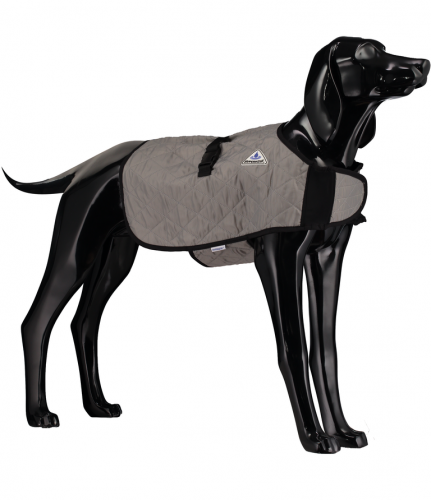 Silver Dog Cooling Coat