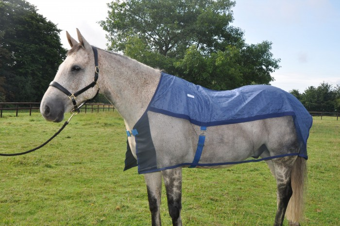 The Aerochill Cooling rug in size large (good size 16.3hh Irish hunter)