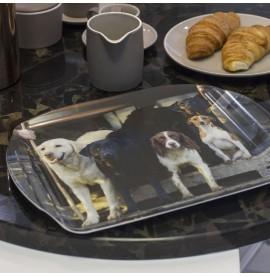 Charles Sainsbury-Plaice Trays