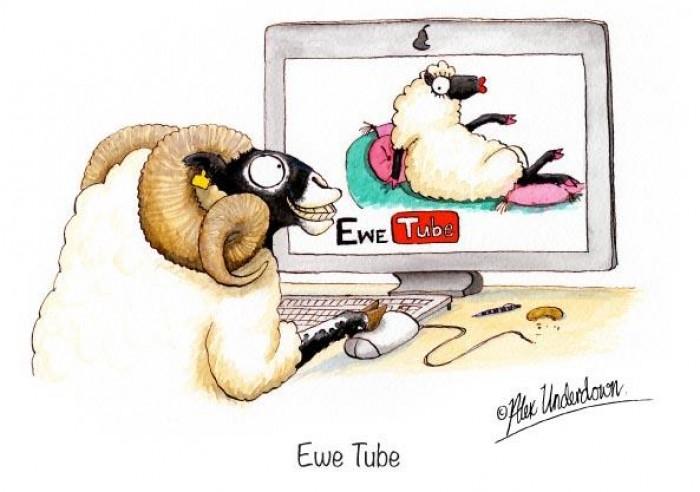 Ewe Tube