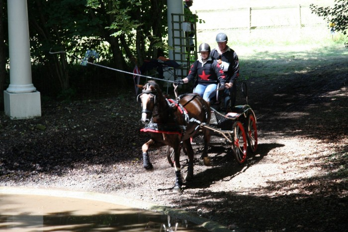 Hannah and Matt Kelly competing last weekend at Goodwood in there Treehouse shirts with Stapleford Enchantment.