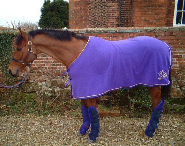 Purple with gold braid fleece rug with embroidered name
