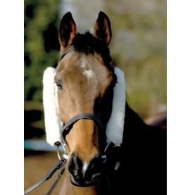 Cheek Pieces/French Blinkers