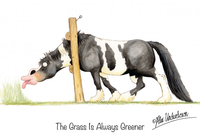 Grass is Alweays Greener