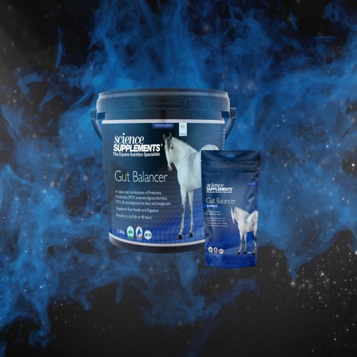 Gut Balancer Express by Science Supplements image #