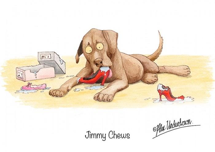 Jimmey Chews