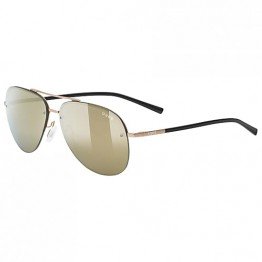lgl 40 Gold Matt Uvex Sunglasses