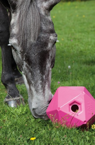 Shires Ball Feeder Pink