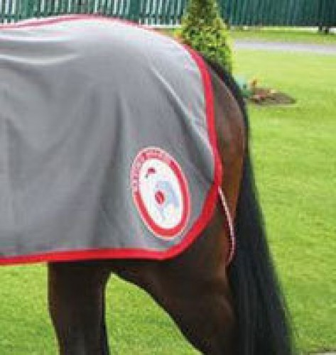 A bespoke paddock sheet patch supplied by Treehouse for Racing Shares UK.
