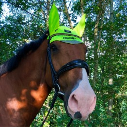 Charlotte Dujardin Reflective Mesh Ears by Equisafety