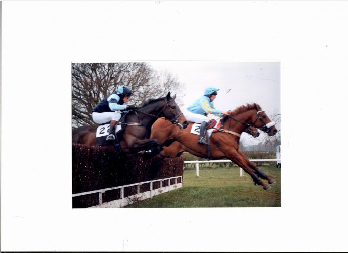 The racing girth sleeve being used in conjunction with the point to point girth on the horse on the left.