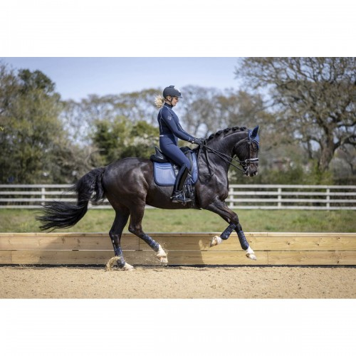Navy Dressage set with Fly Hood and Snug Boots