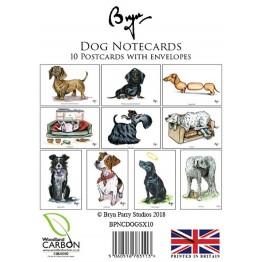 Animal Notecards