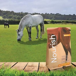 Total Gut by Nourish