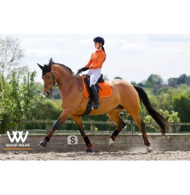 Woof Wear Colour Fusion Dressage Set