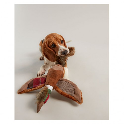 Joules Pheasant Dog Toy image #