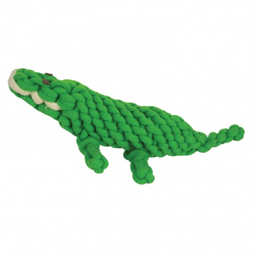 Alfie Alligator