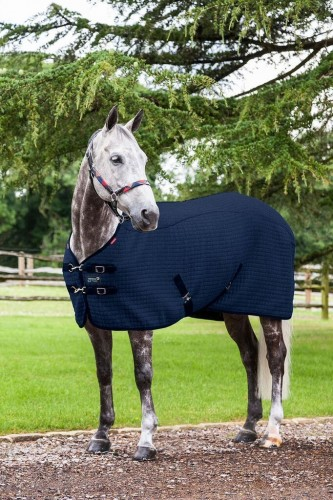 Thermo-Cool Le Mieux Navy Rug
