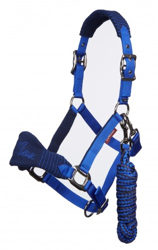 Vogue Headcollar in navy and royal.