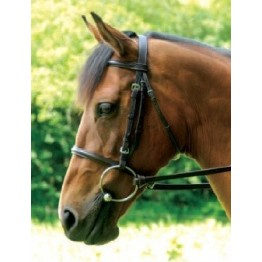 Full Grain Leather Racing Bridle