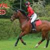Royal Red XC set