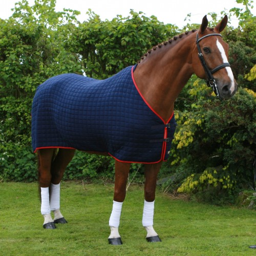 Thermatex Original Wicking Rug in Dark blue with red trim