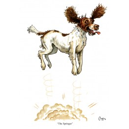 Dog Greeting Cards - Bryn Parry
