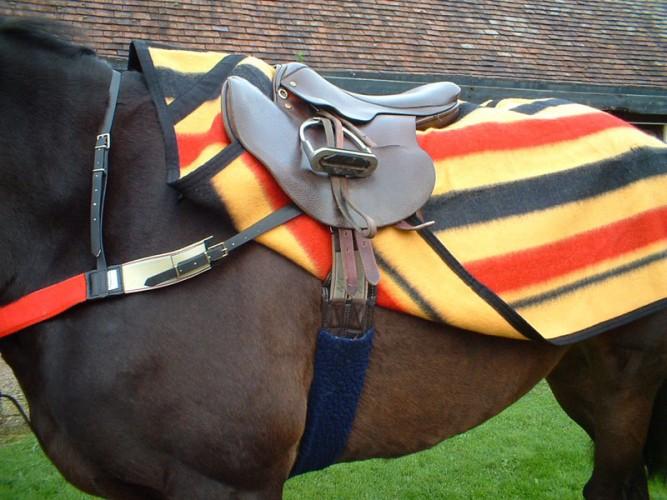 Witney Stripe Wool Sheet image #