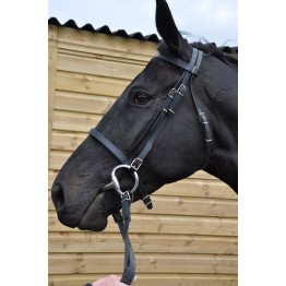 Synthetic Reins & Bridles
