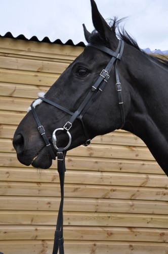 Syntetic Bridle with Grackle