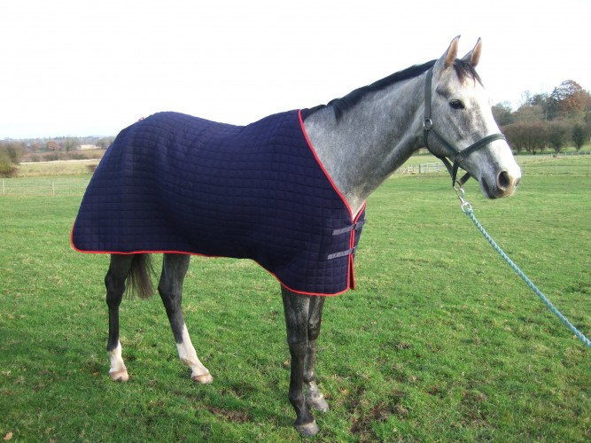 The front view of the Thermatex Original Wicking Rug showing the fastening straps.