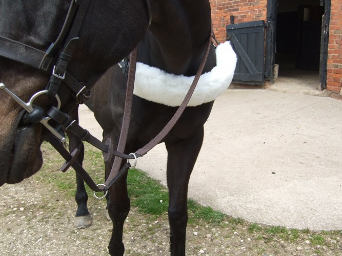 Leather Irish martingale on a pair of racing reins with a breastgirth and sleeve.